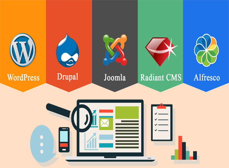 website designing company in vasant vihar, Seo services, Best hosting in vasant vihar